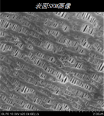 电池隔膜扫描图像